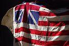 The Grand Union Flag by John Schneider