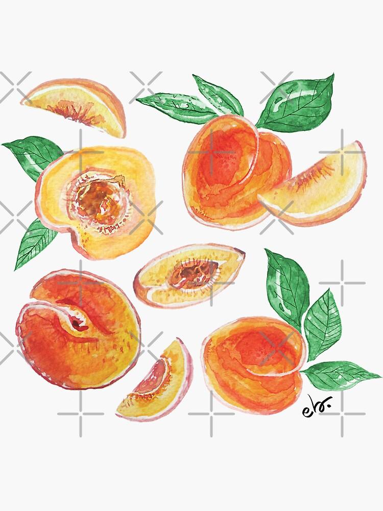 Peach party in my garden_ watercolour & ink  by ebozzastudio