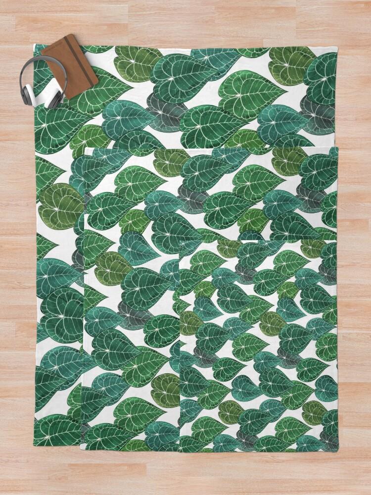 Alternate view of Anthurium clarinervium leaves Throw Blanket