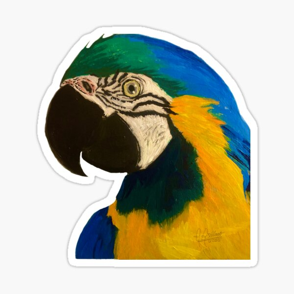 Exotic bird Guacamaya, papagayo, Macaw Sticker