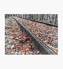 Past the Tracks Photographic Print
