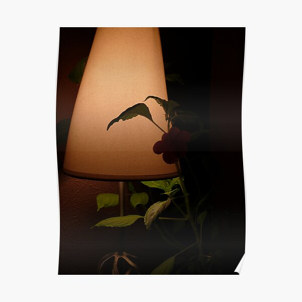 Plant in table lamp Poster