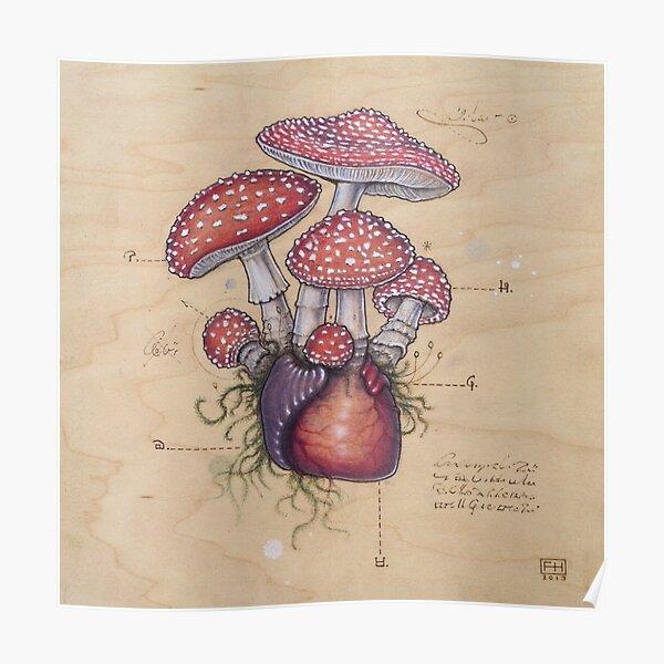 Toadstool Heart (Amanita Muscaria) Poster
