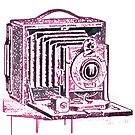camera by Jamie McCall