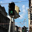 Budapest - Erzsébet Körút  by rsangsterkelly