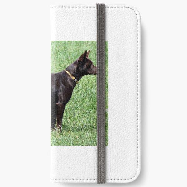 Belle iPhone Wallet