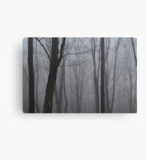 Mystery Canvas Print