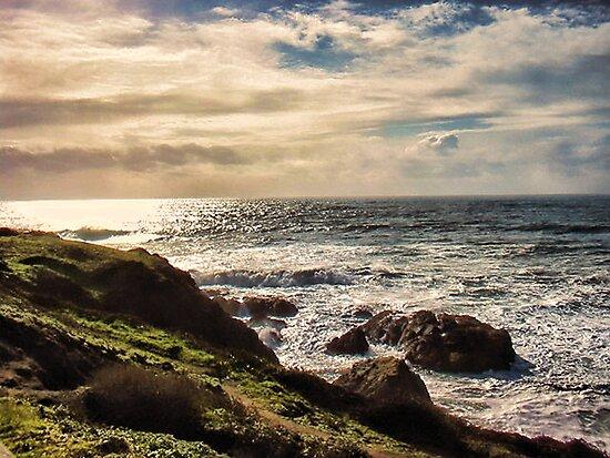 coastal beauty by vigor