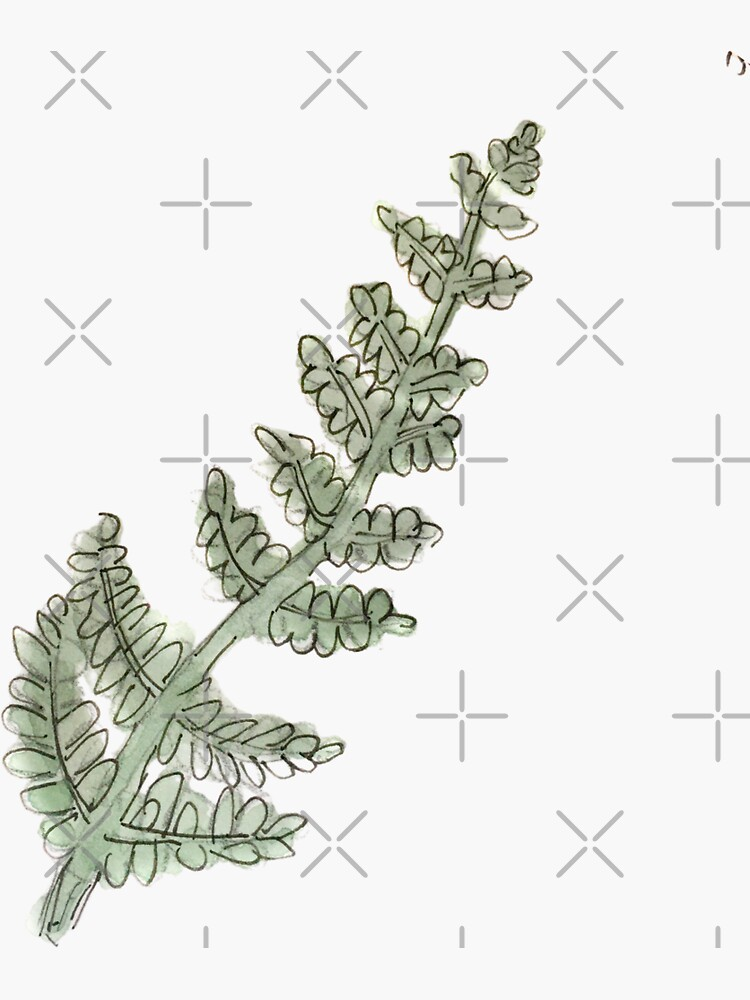 Dark Green Fern Leaf Illustration in Watercolor  by WitchofWhimsy