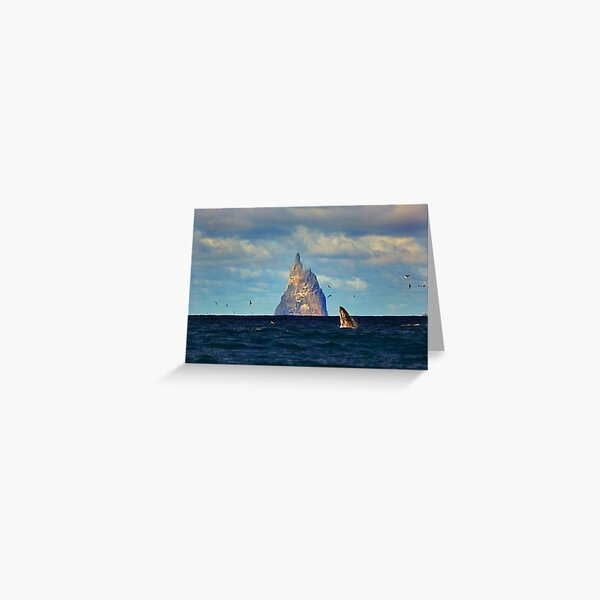 The Whale Shot Greeting Card