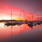 Pink and the Yachts by Kyle  Rodgers