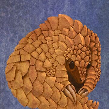 Phil the Pangolin by markelton