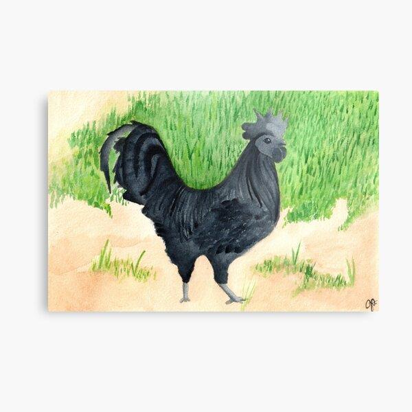 Rooster Noir Metal Print