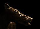 Greyhound by Yampimon