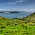 A View Towards Burgh Island, Bigbury on Sea, Bantham by jcjc22