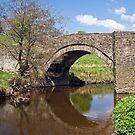 The Bridge by partridge