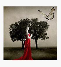 Metamorphosis... Photographic Print
