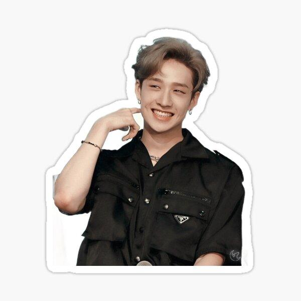 Stray Kids Chan Sticker Sticker
