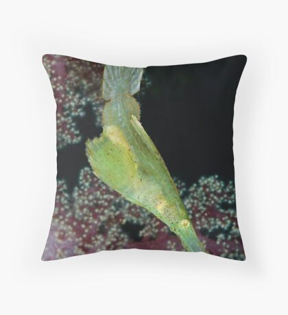 Robust Ghostpipefish Throw Pillow