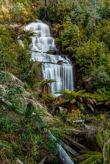 Fainter Falls - Bogong Victoria by Mark  Lucey