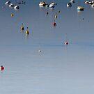 Calm Sorrento Waters, Victoria by Mick Kupresanin