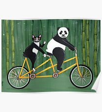 Panda and Cat Bicycle Tandem Poster