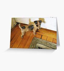 A Registered Door Dog Greeting Card