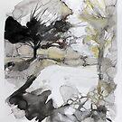 Mutley Park 2 by Richard Sunderland