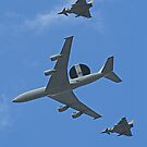 Queens Birthday Flypast 2- London 15.06.2013 by Colin  Williams Photography