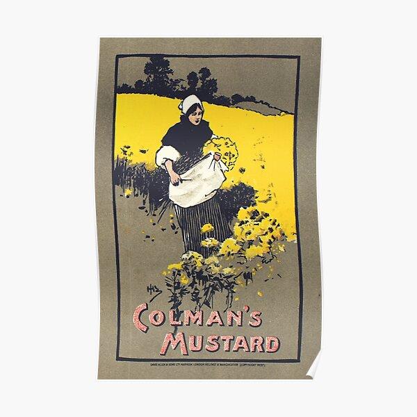 Vintage poster - Colman s Mustard - advert poster Poster