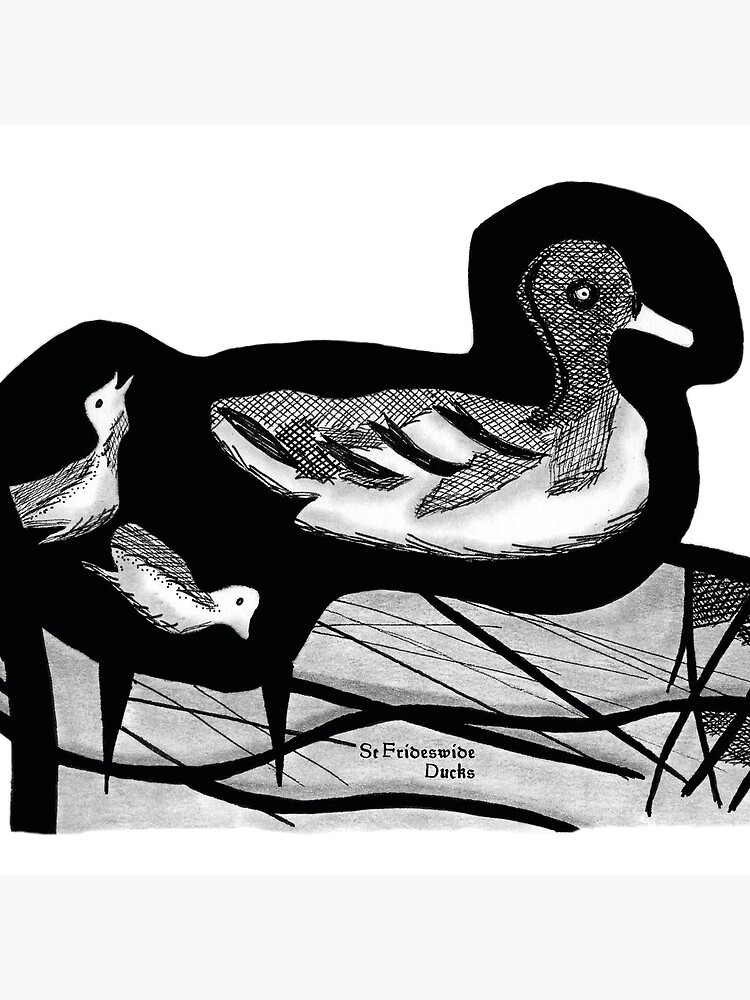 St Frideswide Ducks by hoxtonboy