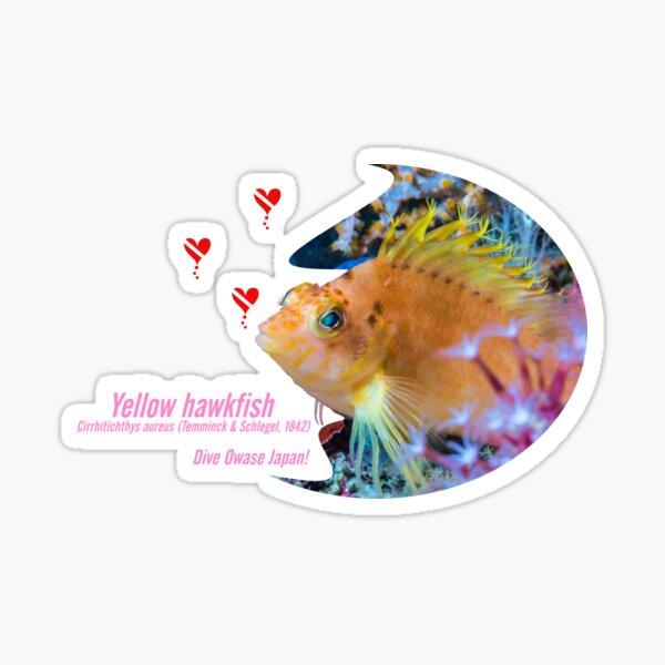 Pretty Yellow hawkfish cut-out prints Sticker