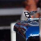 Winging it! by John Schneider