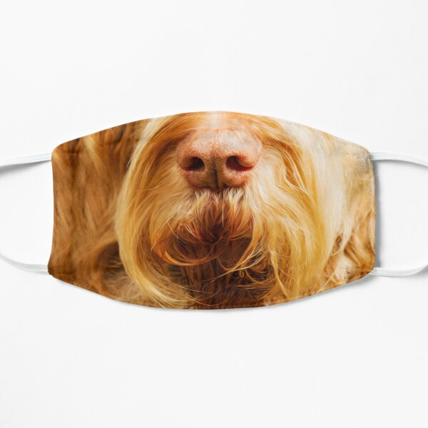 Soft Spinone Nose Mask