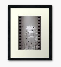 On My Way To Mt. Misery I - Lincoln, MA Framed Print