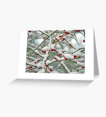 Christmas card with snow scene Greeting Card