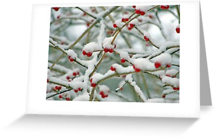Christmas card with snow scene by Cheryl Hall