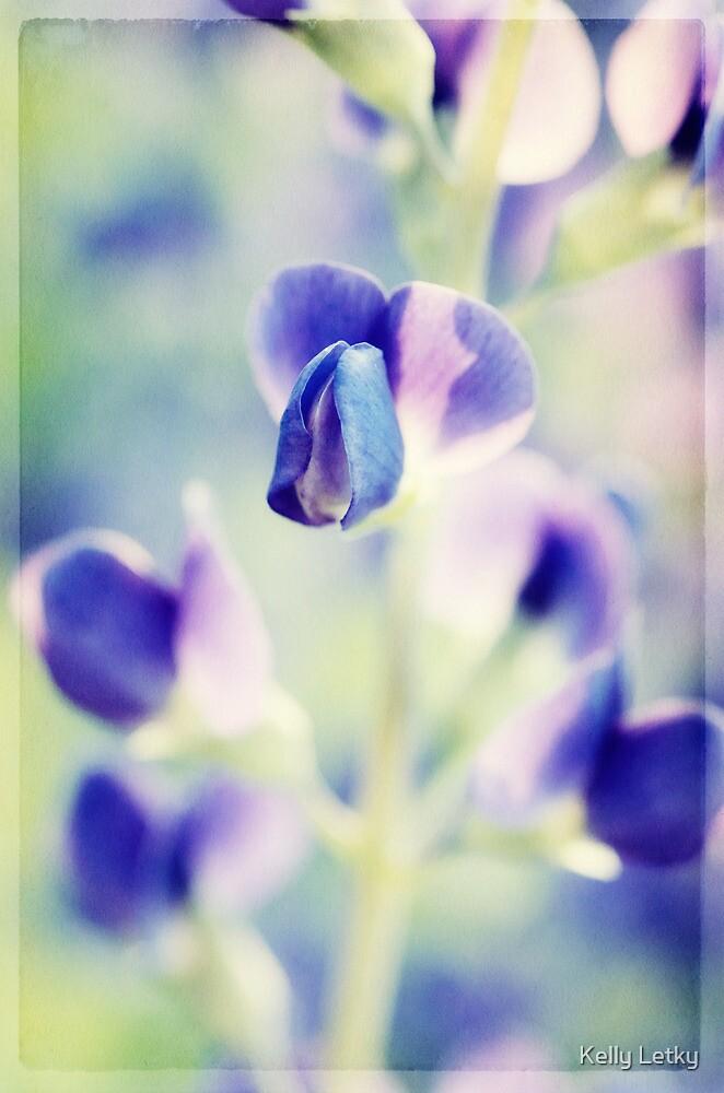 purple heart by Kelly Letky