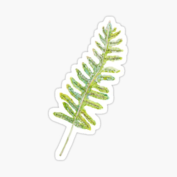 Polypody Fern Sticker