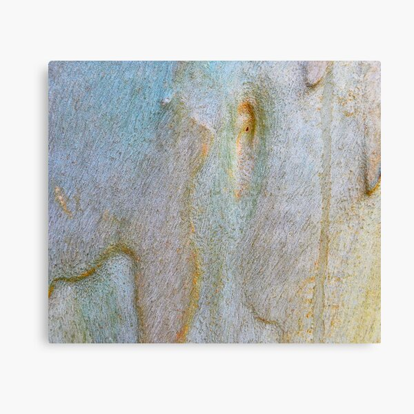 Eucalyptus Bark Texture Canvas Print