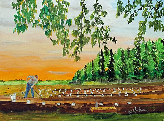 Hands Working The Earth by Jack G Brauer