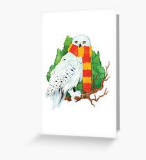 .winter hedwig. Greeting Card