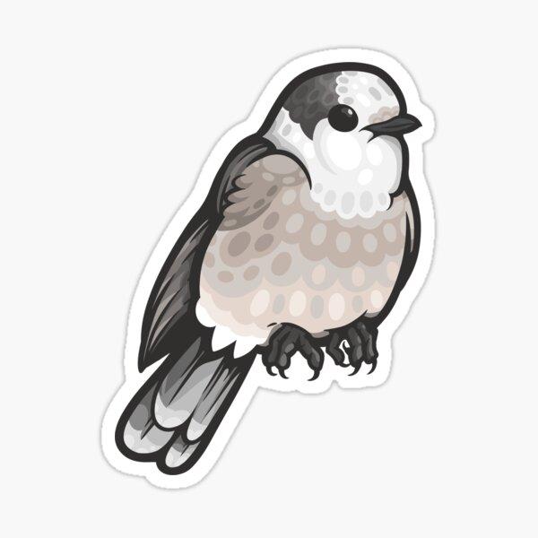 Canada Jay Sticker
