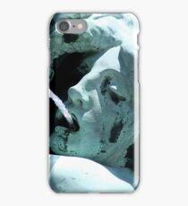 fountain iPhone Case/Skin