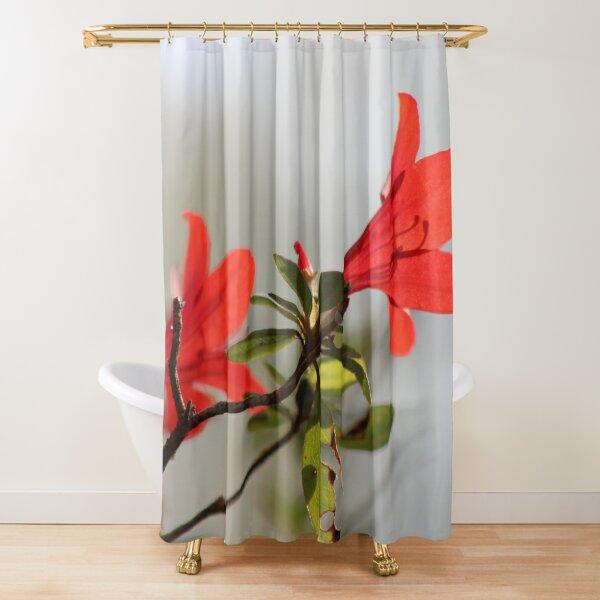 Fiery Bright Red Azalea Flower Blossom Shower Curtain