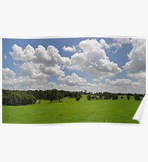 Florida Farm Land  Poster