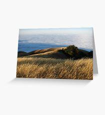 Borderland, Timber Top, Ventana Wilderness, CA 2013 Greeting Card