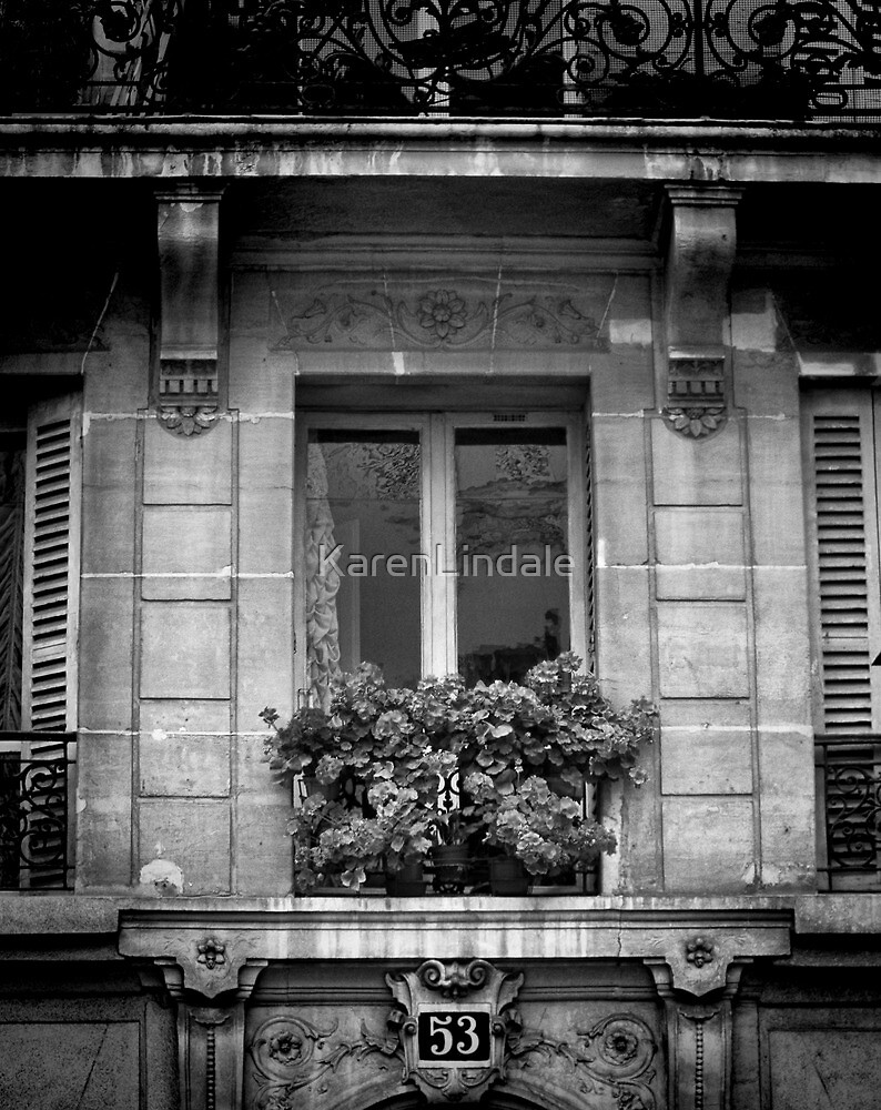 A Parisian Outlook by KarenLindale