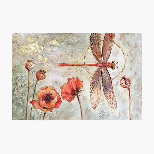 Red Jewel Damselfly Photographic Print