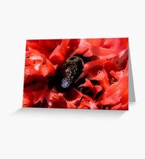 Poppy_Bee Happy Greeting Card